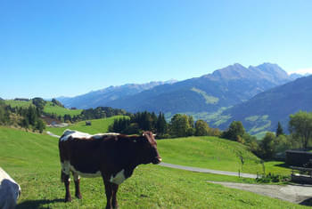 Family holiday Kitzbühel - pure nature in the mountains