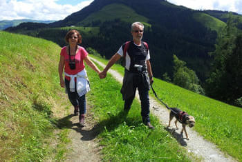 Hiking holiday Kitzbühel Alps - holiday with dog