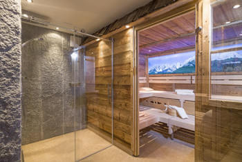 NEW Almsauna - Pure Wellness Kitzbühel