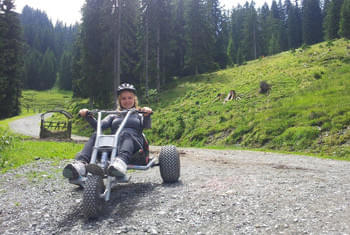 NEU Mountaincart am Harschbichl